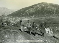 German Prisoners next to Mount Porchia area
